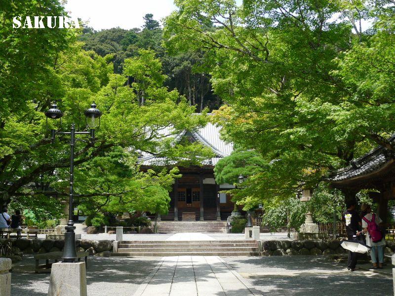 修善寺と伊豆・吉奈温泉の旅⑦「ミシュラン・グリーンガイド・ジャポン」で星二つを獲得した修善寺温泉街を散策。