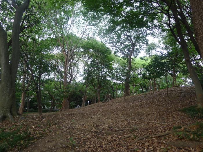 現在の茶臼山の風景