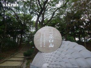 大坂の陣で家康と真田信繁が布陣した茶臼山を訪ねて|『真田丸』紀行③