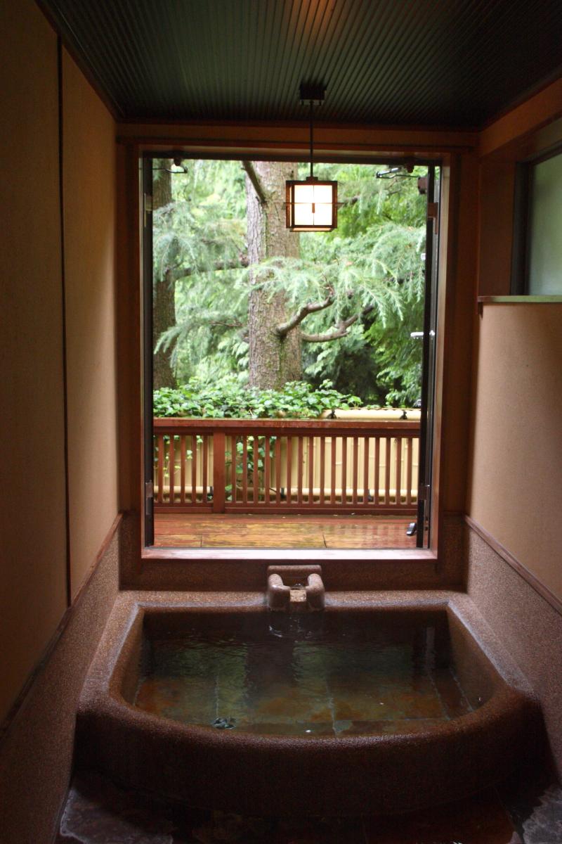 箱根塔ノ沢温泉_山の茶屋 山の朝の専用露天風呂