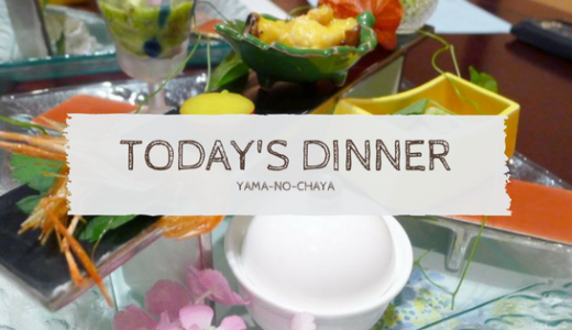 箱根・塔ノ沢温泉『山の茶屋』その②夕食編:豊富な品数と美しい盛付で口も目も大満足!季節の素材をふんだんに使った懐石料理。