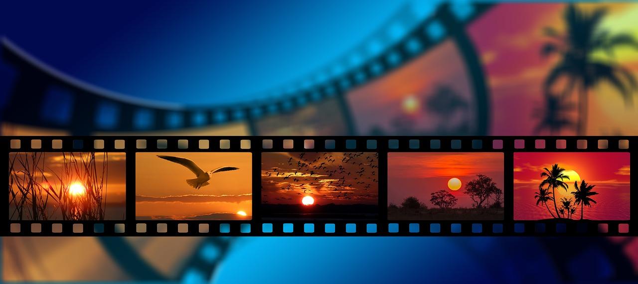 【映画まとめ】2016年に観た映画まとめ(旧作編) 全225作品の中から印象に残ったもの12作品選びました。
