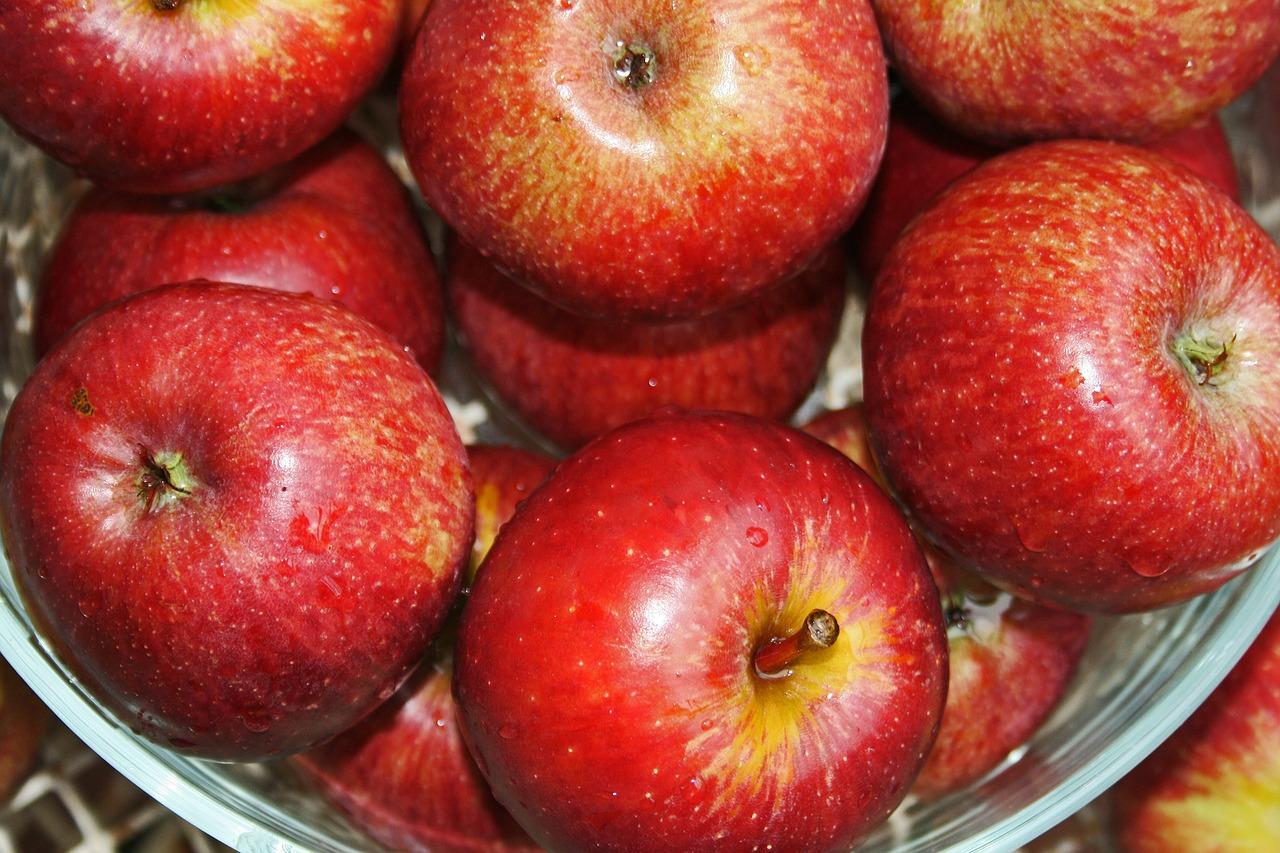 【青森土産】バターの香りがふんわり。国産りんごの焼き菓子「アップルクグロフ」本場ウィーンの味。