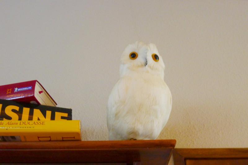 箱根仙石原温泉オーベルジュ漣の館内にある鳥の置物