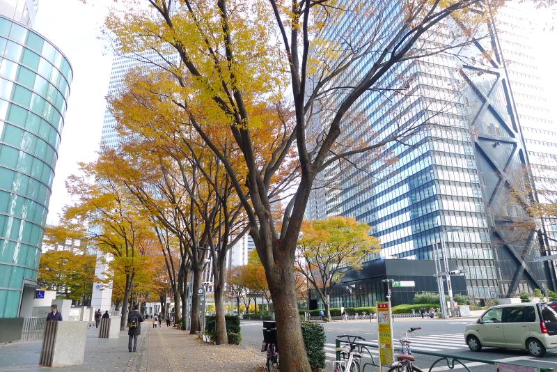 西新宿 オフィス街