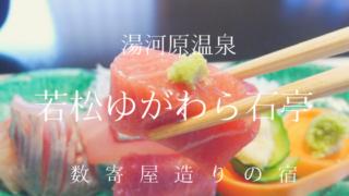 若松ゆがわら石亭_夕食