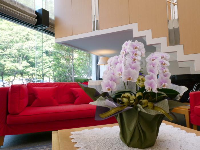 磐梯熱海温泉 オーベルジュ鈴鐘のテーブルの上の蘭の花