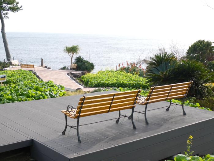 伊豆城ケ崎フラワーガーデンの園内のベンチ