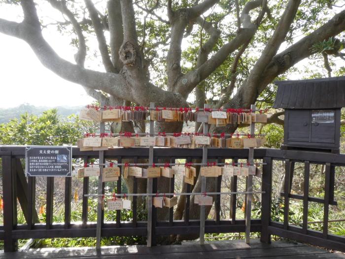 伊豆城ケ崎フラワーガーデンの支え合いの木