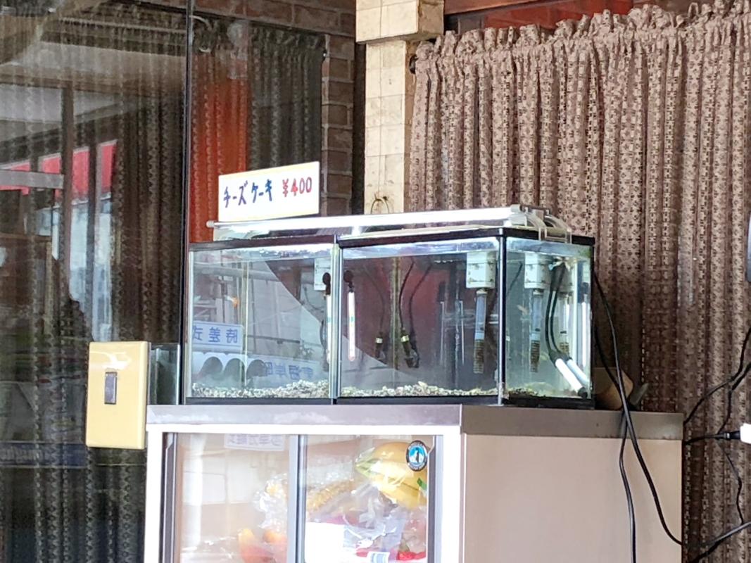 熱海_純喫茶サンバードの店内に飾られた水槽には金魚が泳いでいる