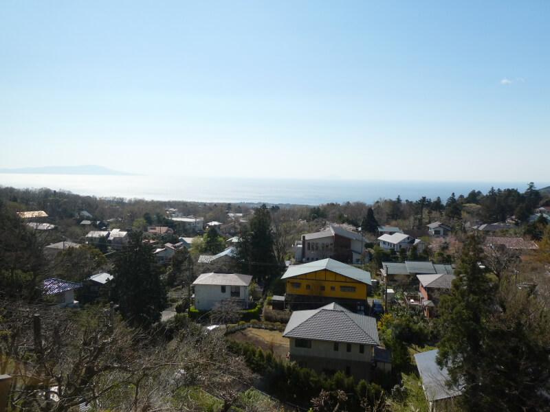 伊豆高原_茄子のはな まめの間から見える海の景色