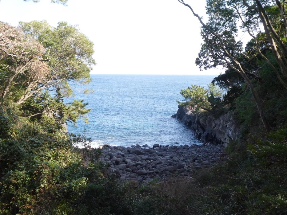 伊豆_蓮着寺から見える海の風景