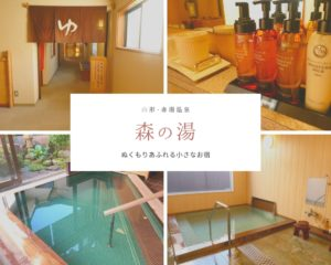 【森の湯】③大浴場編*色鮮やかなグリーンが優しい気持ちにさせてくれた|山形・赤湯温泉