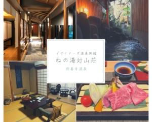 【ねの湯対山荘】和モダンのデザイナーズ旅館にリピート宿泊(3回目)|修善寺温泉